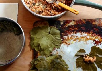 A batch of dolmades the author made in Dunedin, New Zealand. The leaves were from a vine in her friend's backyard.