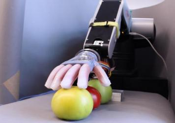 Researchers at Cornell University have developed a soft robotic hand with a touch delicate enough to sort tomatoes and find the ripest one.