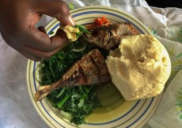 A typical meal in the Democratic Republic of Congo consists of greens, <em>fufu</em> - a starchy ball made from cassava flour - and meat, such as freshwater fish.