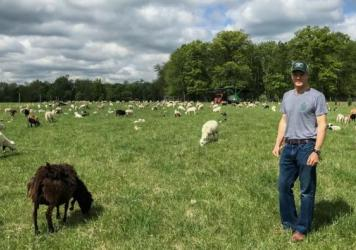 Jon McConaughy, owner of Double Brook Farm, stands in the field with his flock of sheep.