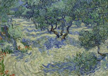 This image, taken through a microscope, captures the grasshopper embedded in the paint of Van Gogh's <em>Olive Trees</em>.