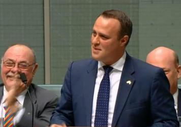 Australian Member of Parliament Tim Wilson proposed marriage to his longtime partner on Monday from the House floor, in what's believed to be the first proposal of its kind in the legislature.