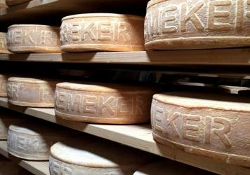 Right: Cows pictured as if for a classic Dutch landscape painting. Left: Remeker is a Dutch farmhouse cheese, made using organic, raw milk. It's a variation on traditional gouda.