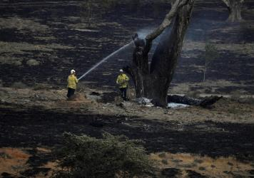 Firefighters spray water on a smoldering tree in the wake of a bushfire near Bumbalong in New South Wales, Australia. February has brought much-needed rain to the state, where fires have burned about 13.3 million acres of land.