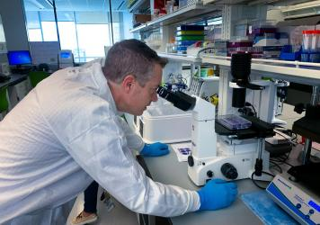 Virologist Christopher Mores looks at cells that have been infected with the coronavirus as part of an effort to develop an antibody test.