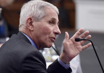 Anthony Fauci, director of the National Institute of Allergy and Infectious Diseases is pictured testifying in March on Capitol Hill. He and others leading the federal coronavirus response testify before the House Energy and Commerce Committee on Tuesday