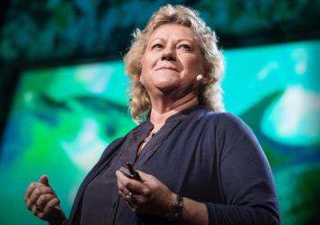 Denise Herzing, dolphin researcher, at TED2013.