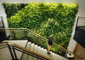 Architects say making the office more like the outdoors — with filtered air and good ventilation — will be a priority post-pandemic. This living wall in the Danielle N. Ripich Commons at the University of New England in Biddeford, Maine, is one such