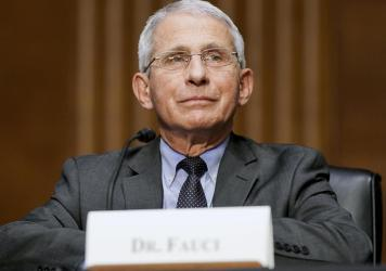 Dr. Anthony Fauci, director of the National Institute of Allergy and Infectious Diseases, testifies this month during a Senate hearing at the U.S. Capitol.