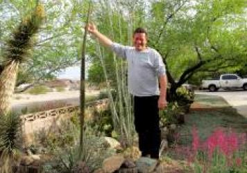 Norm Schilling stands next to a Durango Delight Agave.