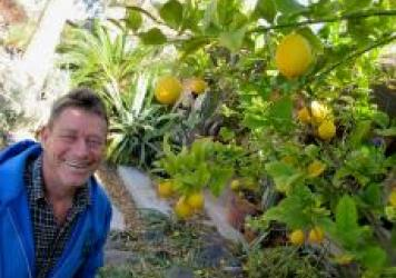 Norm keeps an eye on vulnerable citrus