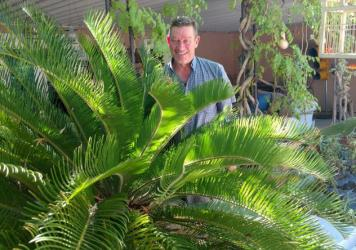 Norm Schilling and Sago Palm