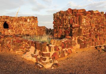 Stone age: Arizona's Petrified Forest
