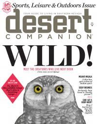 Desert Companion March 2017